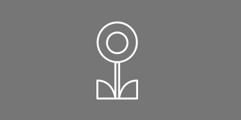 Online初夏【しょか】講習会 日本画科